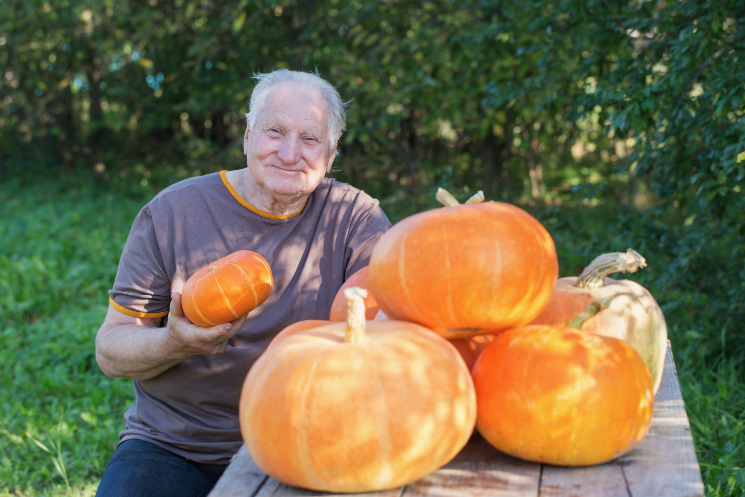 Ten Fall Activities for Aging Loved Ones